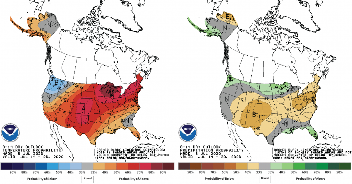 Figure 3: Climate Prediction Center 8-14 Day Outlook valid for July 14-20, 2020 for left) temperatures and right) precipitation. Colors represent the probability of below, normal, or above normal conditions.