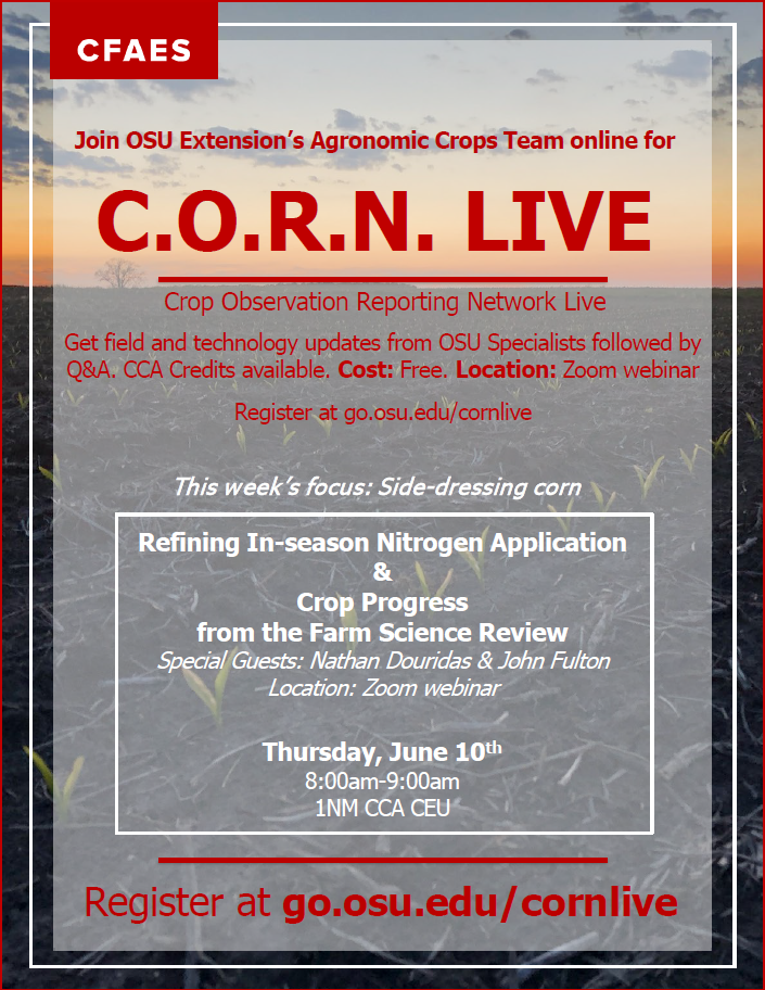 CORN Office Live