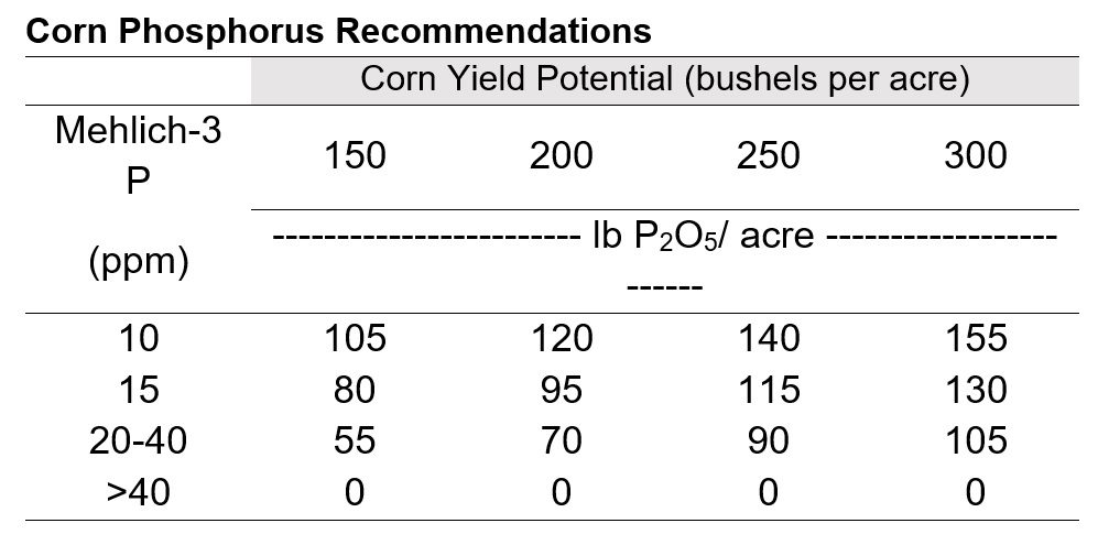 Corn Phosphorus Recommendations
