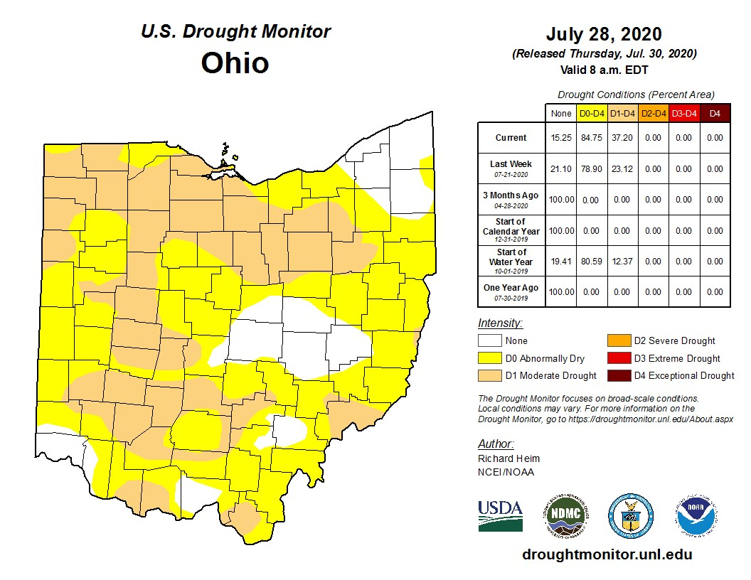 Drought Monitor for Ohio