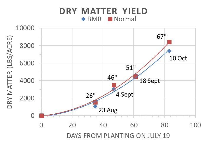 Dry Matter Yield