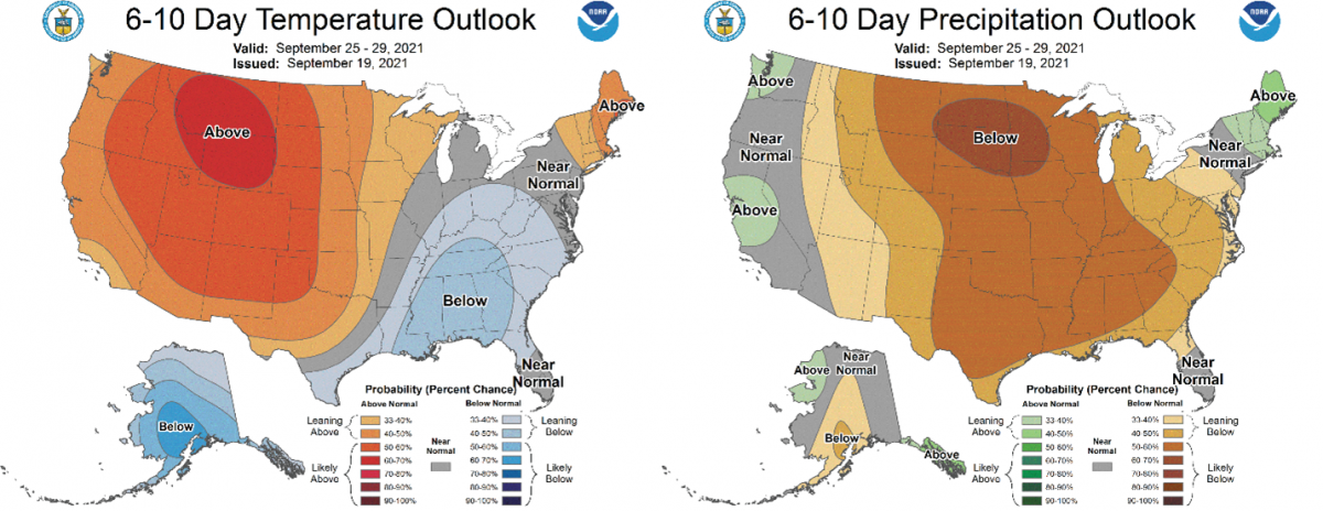 Figure 2) Climate Prediction Center 6-10 Day Outlook valid for September 25-29, 2021, for left) temperatures and right) precipitation. Colors represent the probability of below, normal, or above normal conditions.
