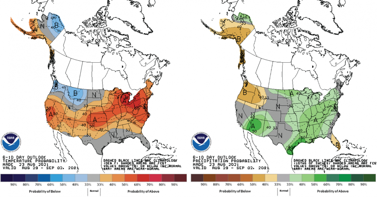 Figure 2) Climate Prediction Center 6-10 Day Outlook valid for August 29 – September 2, 2021, for left) temperatures and right) precipitation. Colors represent the probability of below, normal, or above normal conditions.