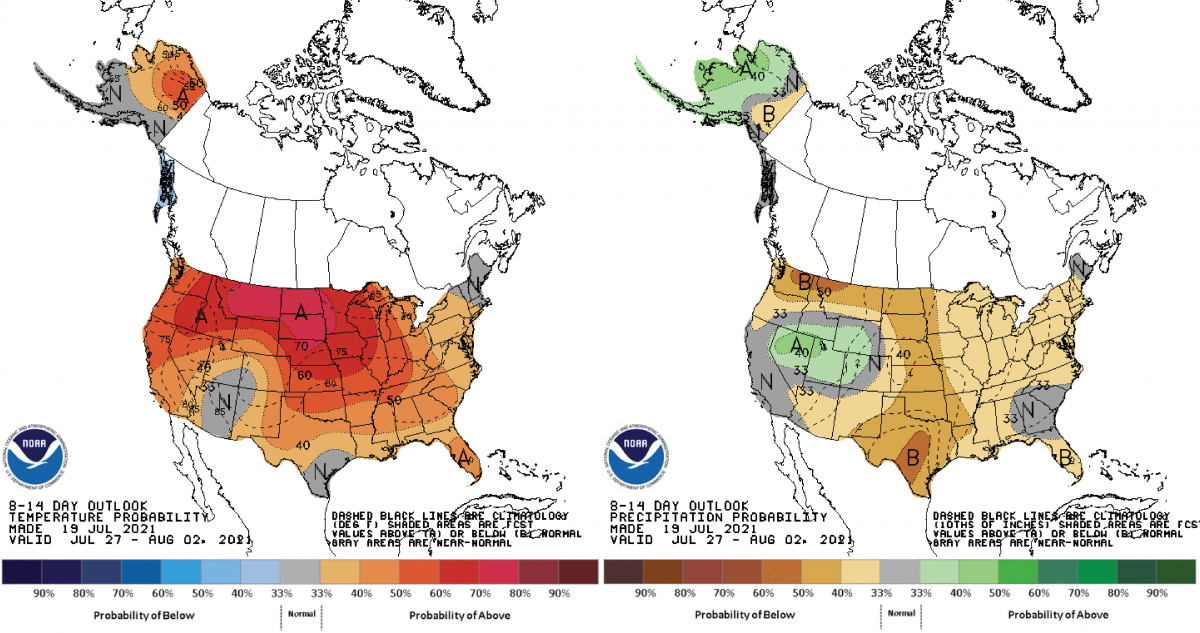 Figure 2) Climate Prediction Center 6-10 Day Outlook valid for July 27 – August 2, 2021, for left) temperatures and right) precipitation. Colors represent the probability of below, normal, or above normal conditions.