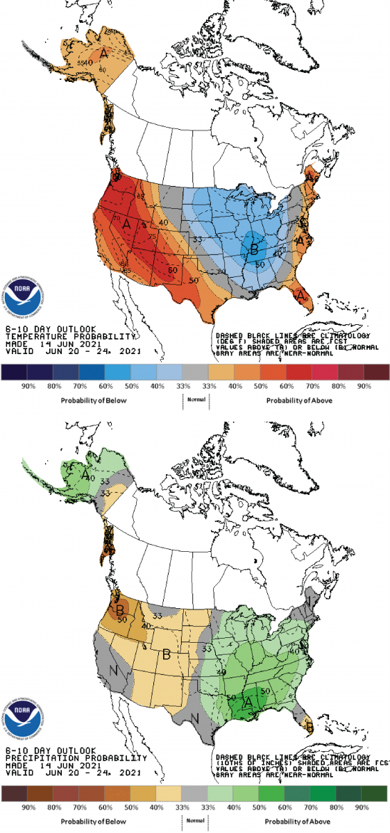 Figure 3: Climate Prediction Center 6-10 Day Outlook valid for June 20 – 24, 2021 for top) temperatures and bottom) precipitation. Colors represent the probability of below, normal, or above normal conditions.