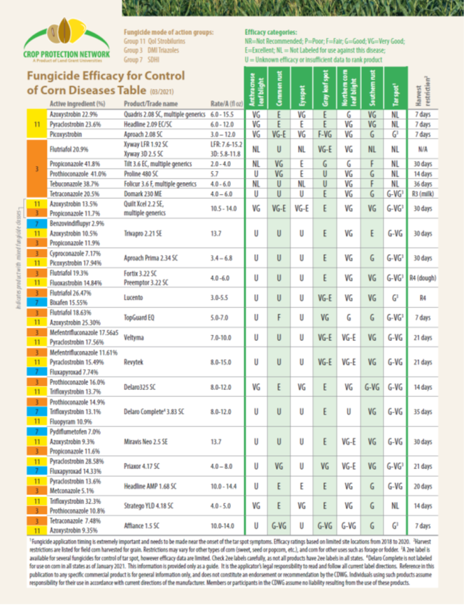 fungicide efficacy for control of corn diseases table