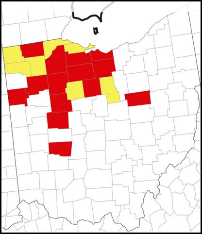 Ohio Tar Spot Map 9/7/2021