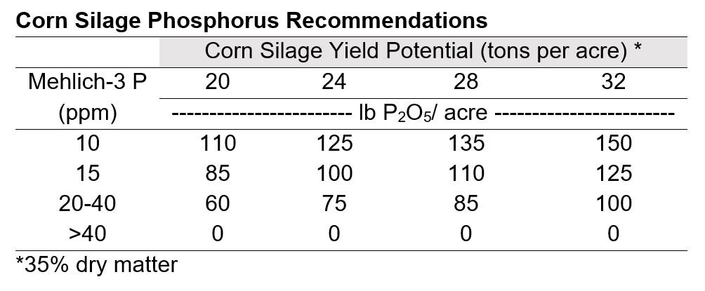Corn Silage Phosphorus Recommendations
