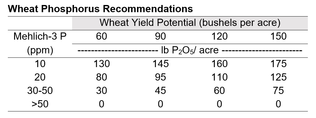 Wheat Phosphorus Recommendations