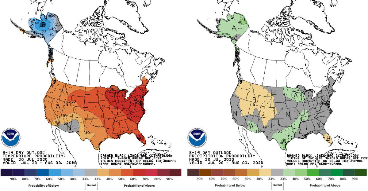 Figure 3: Climate Prediction Center 8-14 Day Outlook valid for July 28- August 3, 2020 for left) temperatures and right) precipitation. Colors represent the probability of below, normal, or above normal conditions.