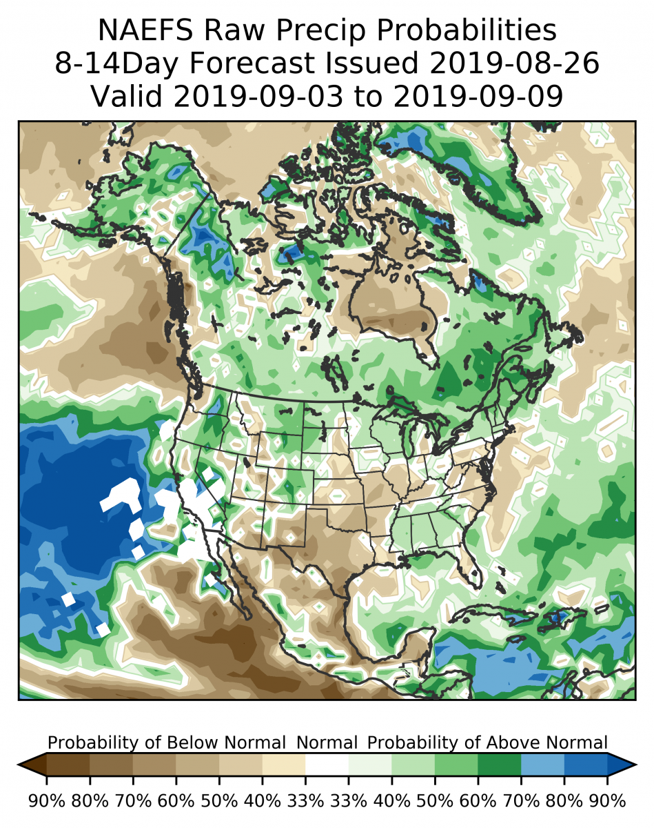 8-14 Day Precipitation Forecast