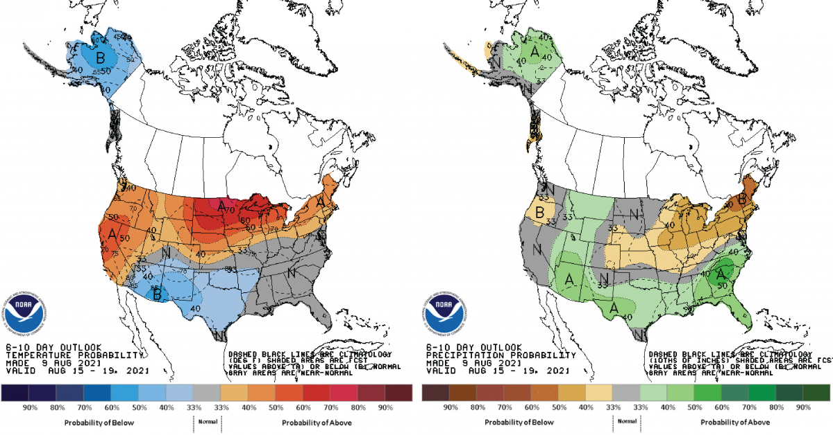 Figure 2) Climate Prediction Center 6-10 Day Outlook valid for August 9, 2021, for left) temperatures and right) precipitation. Colors represent the probability of below, normal, or above normal conditions.
