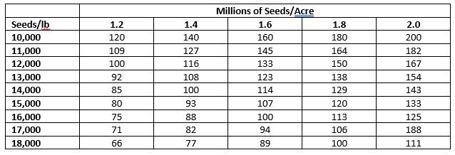 wheat seeding rate