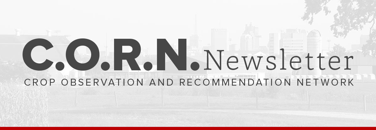 C.O.R.N. Newsletter