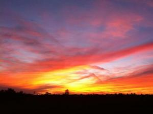 Evening Sunset