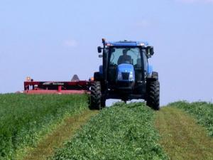 Harvesting forages