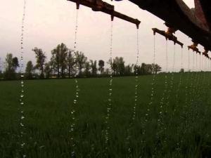 Streaming nitrogen on wheat