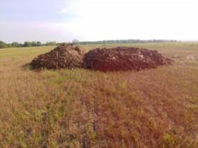 a pile of poultry litter in a field of wheat stubble