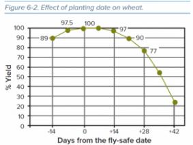 Delayed Wheat Planting
