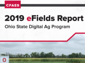 2019 eFields Report