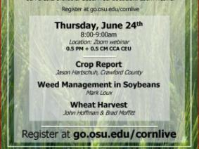 CORN Live June 24