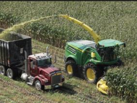 2018 Northwest Ohio Corn Silage Test