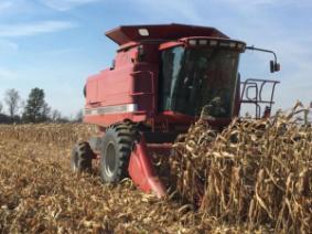 Combine Shelling Corn