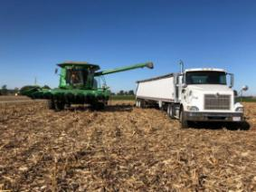 2018 Ohio Corn Performance Test Preliminary Results Now Available On-Line