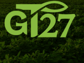 The LL-GT27 soybean – what's legal?