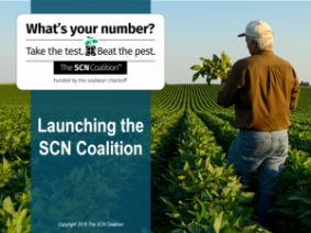 """What's your number?"" The SCN Coalition is launched"