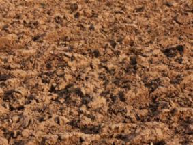 soil surface temperatures