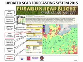 Scab Forecasting System